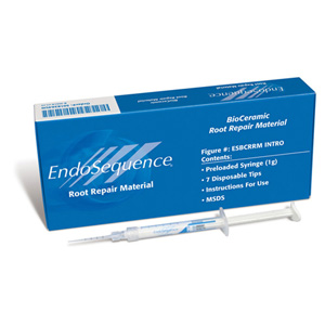 EndoSequence Root Repair Material - Intro Syringe Kit - 1g + 7 Tips