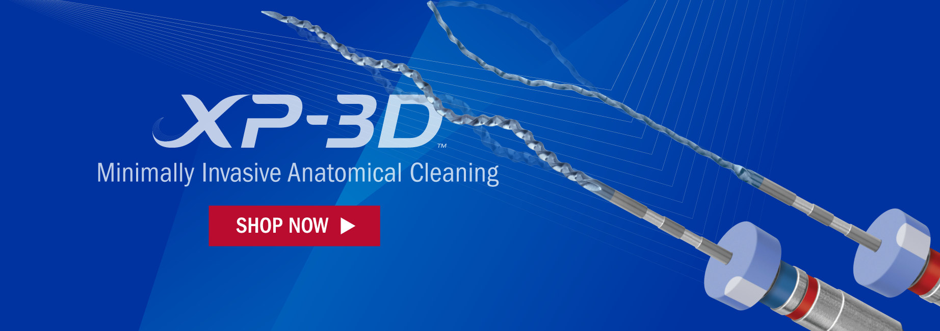 XP-3D Endodontic Instrumentation. Minimally Invasive Anatomical Cleaning